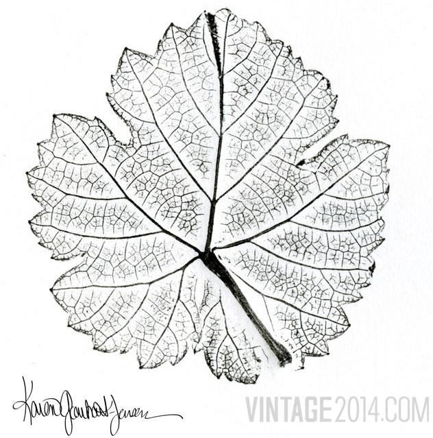 Roussanne Leaf