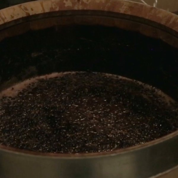 Barrel Fermenting Grapes