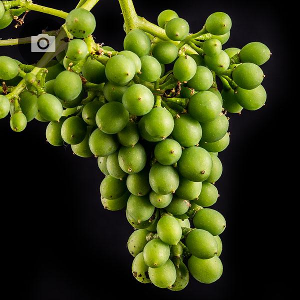 grape custer fruit set